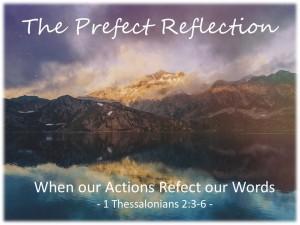 Lifestyle Reflections